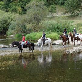 Погружение в Алтай: кони, сплав и трекинг