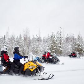 Снегоходное сафари на остров Лычный
