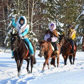 По лесам Карелии на лошадях и собаках