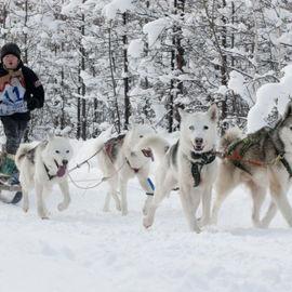 Зимняя сказка. Приключения на Камчатке