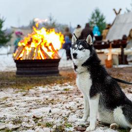 Рождество на берегах Карельского озера