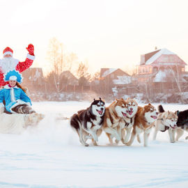 Новый год и Рождество в Карелии. Сокращенная программа