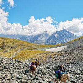 Конный поход к Белухе и Кучерлинскому озеру