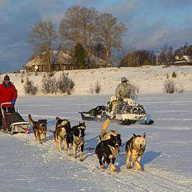 Зимний восторг в Карелии
