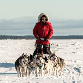 Экспедиция на собачьих упряжках по Онежскому Поморью с Федором Конюховым
