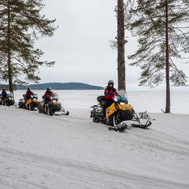 Новогодний эксклюзив в Карелии. Снегоходное сафари