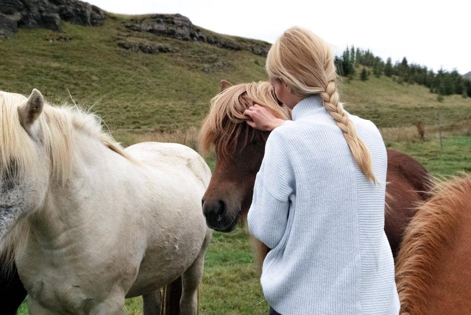 Конные прогулки в Карелии