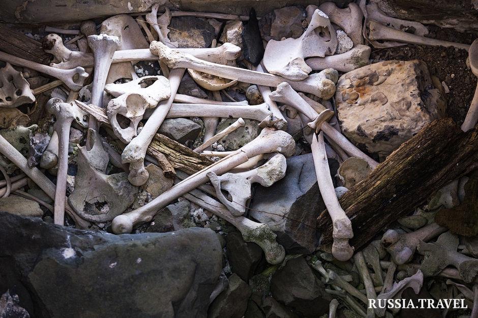 Джейрахско-Ассинский музей-заповедник и заповедник «Эрзи»