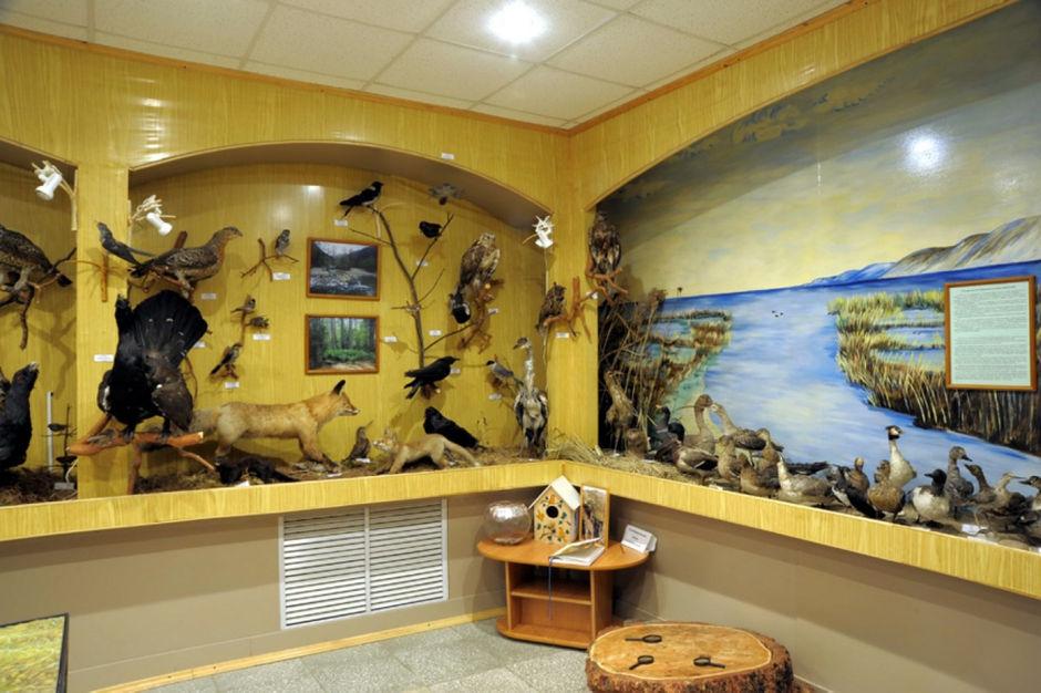 Музей природы байкальского заповедника