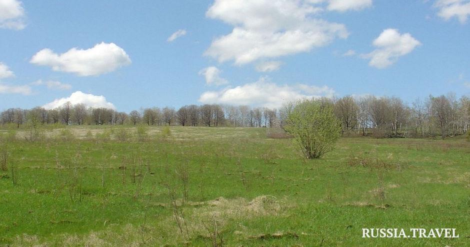 Богатырская поляна